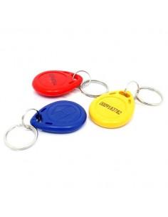 RFID 125kHz Keychain Tag